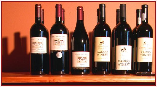Oudtshoorn Itineraries - Wine Tasting
