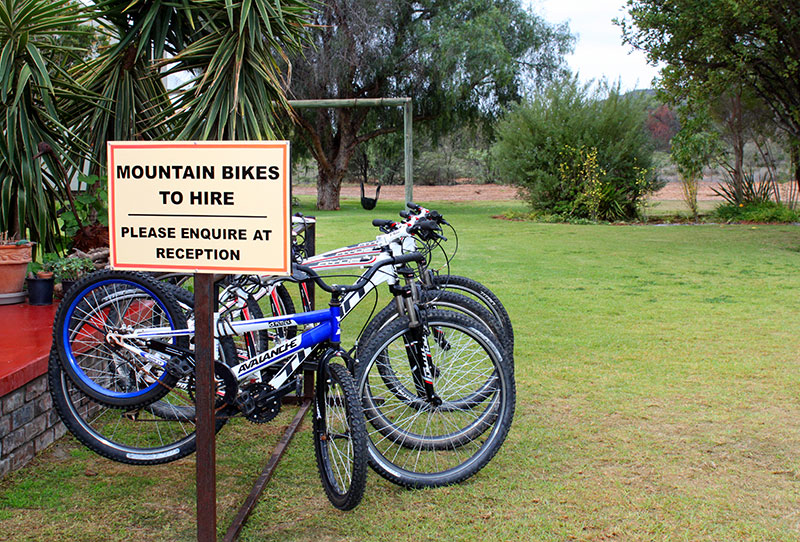 Bicycles for rent - Child Friendly Activities